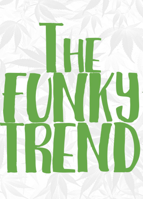 The funky trend fizzy magazine 13