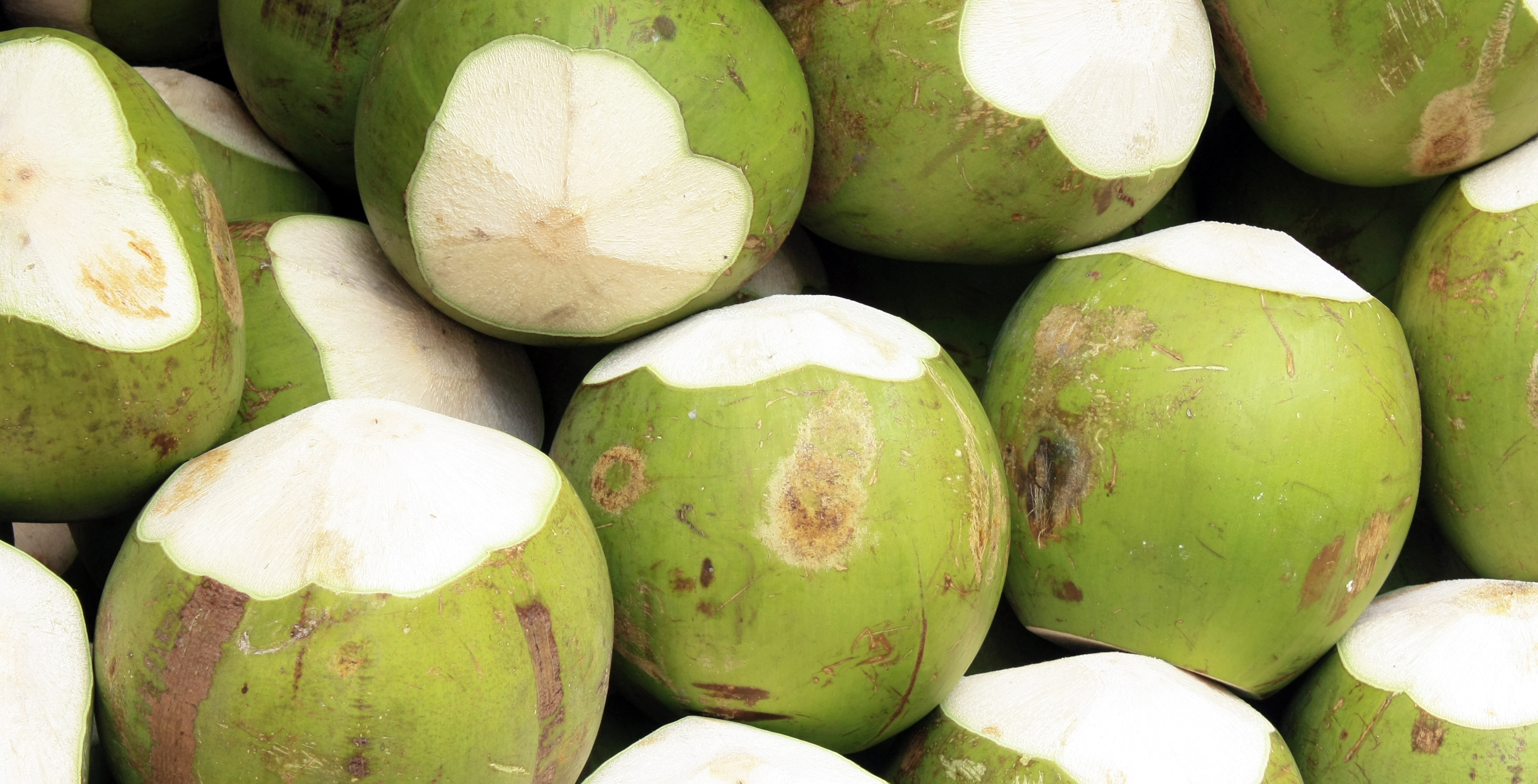 Top Health Benefits Of Fresh Coconuts The Benefits Of